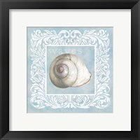 Framed Sandy Shells Blue on Blue Snail