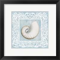 Framed Sandy Shells Blue on Blue Nautilus