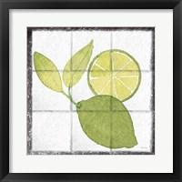 Framed Citrus Tile VII Black Border