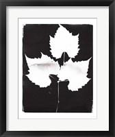 Framed Nature by the Lake Leaves I Black