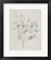 Framed Soft Summer Sketches II Light