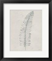 Framed Soft Summer Sketches I Light