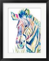 Framed Colorful Zebra