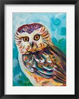 Framed Colorful Owl