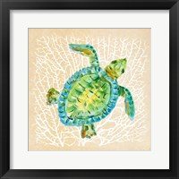 Framed Sealife Turtle