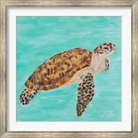 Framed Sea Turtle I