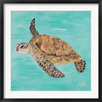 Framed Sea Turtle II