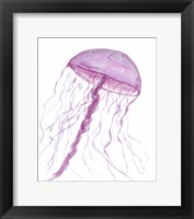 Framed Jellyfish II