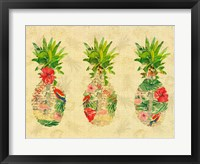 Framed Triple Tropical Pineapple Collage