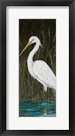 Framed White Egret