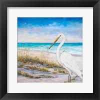 Framed Egret on the Beach