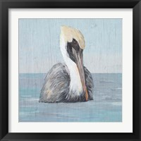 Framed Pelican Wash II