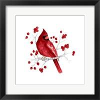 Framed Winter Cardinal in Red I