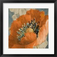 Framed Orange Poppy