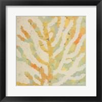 Framed Coral Vision I