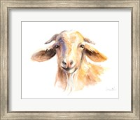 Framed Morning Goat