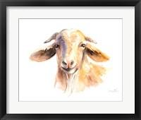 Framed Morning Goat