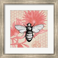 Framed Bee on Pink Flower Square