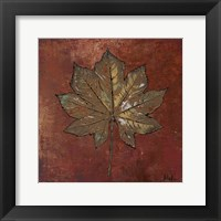 Maple I Framed Print