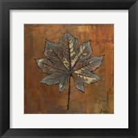 Maple II Framed Print