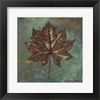 Framed Maple IV