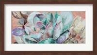 Framed Desert Flower on Terra Cotta