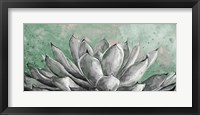 Framed Gray Agave on Green