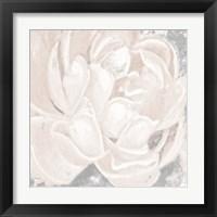 Framed White Grey Flower I
