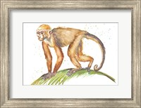 Framed Monkeys in the Jungle II