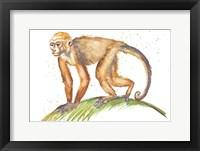 Framed Monkeys in the Jungle II