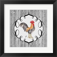 Framed Rooster on the Roost I