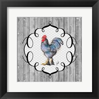Framed Rooster on the Roost II
