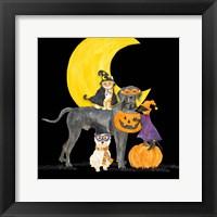 Framed Fright Night Friends II Dog with Pumpkin
