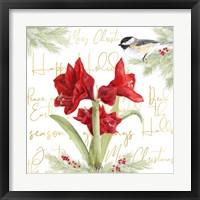 Framed Merry Amaryllis I