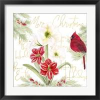 Framed Merry Amaryllis III