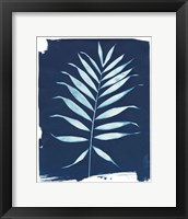 Framed Nature By The Lake - Frond I