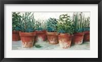 Framed Pots of Herbs II White