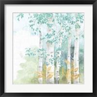 Framed Natures Leaves III