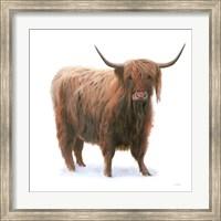 Framed King of the Highland Fields on White