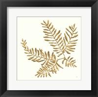 Framed Gilded Fern II