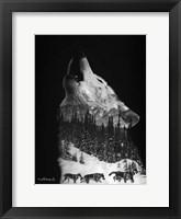 Framed Black & White Wolf Pack