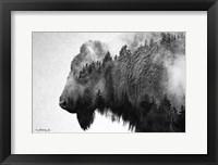 Framed Black & White Bison