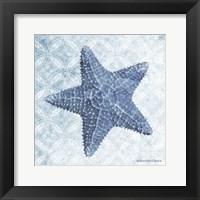Framed Starfish I