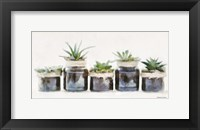 Framed Rustic Plants in a Row