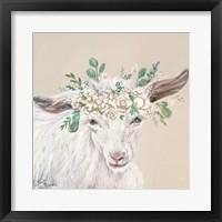 Framed Faith the Goat