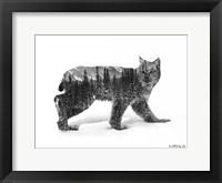 Framed Black & White Bobcat