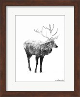 Framed Black & White Elk