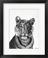 Framed Black & White Tiger