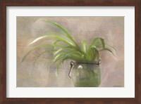 Framed Glass Pot Plant