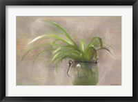 Framed Glass Pot Plant